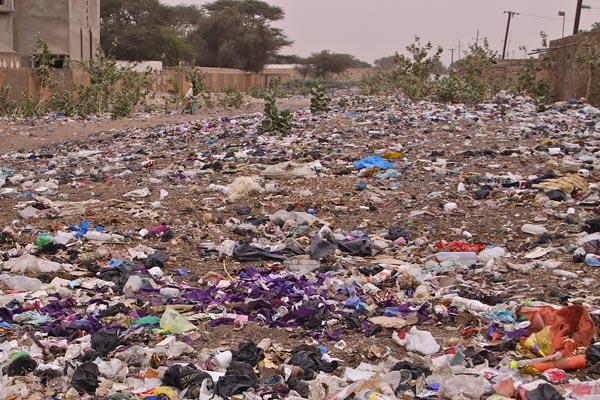La société Extranet de ramassage des déchets ménagers opérationnelle dans 29 communes d'Alger
